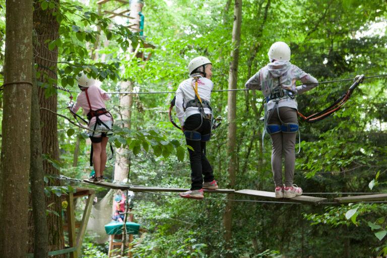 anjou sport nature sejour grimpe accrobranche